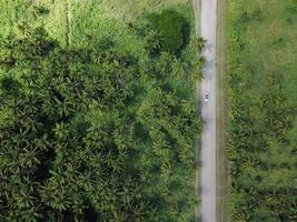 photographie aérienne du véhicule sur route
