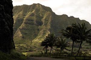 montagne surplombant les arbres photo