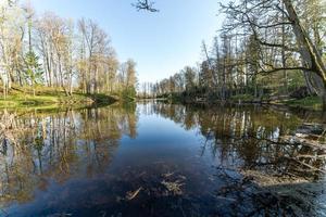 reflets pittoresques des arbres et des nuages dans l'eau photo