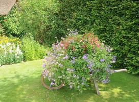jardin de cottage anglais traditionnel dans le devon en été. photo