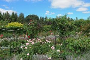 Jardins de Rosemore, Torrington, dans le Devon, England, UK