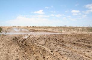 Route de sel boueux après de fortes pluies, Skeleton Coast, Namibie, Afrique photo