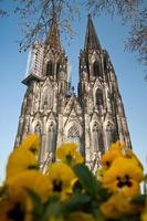 Cologne chatedral photo