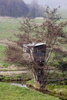 cabane dans les arbres photo