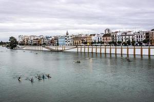 Siviglia, Andalousie - Espagne photo