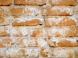 pierre de fond. photo