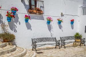 rue pittoresque de mijas avec des pots de fleurs en façades. andalus