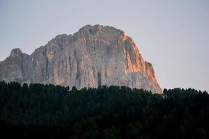 silhouette d'arbres en face de la montagne photo