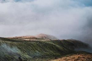 montagne avec herbe verte vibrante photo