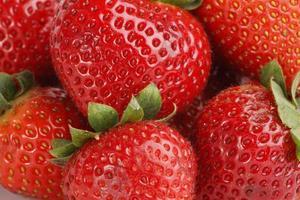 fond de fraise photo