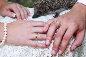 mariées et mains de marié photo