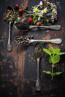 tisane noire, verte et aux herbes photo