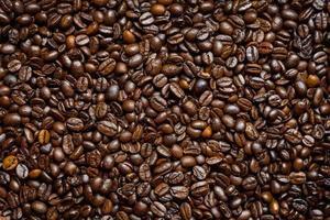 fond de grains de café photo