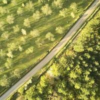 vue de dessus de la route photo