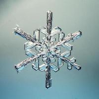 macro flocon de neige cristaux de glace présents naturel