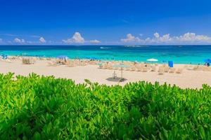 atlantis aux bahamas photo
