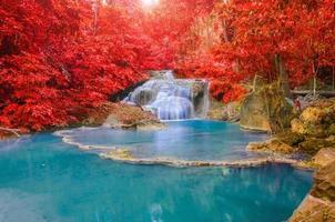 magnifique cascade avec des arcs-en-ciel dans la forêt profonde au pair national