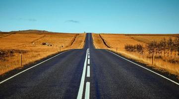 Route asphaltée noire entre les champs bruns