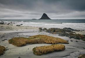roche moussue sur la côte côtière photo