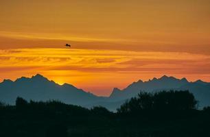 oiseau au-dessus de la chaîne de montagnes photo