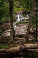 Tir vertical des chutes de Cunningham dans le Maryland photo