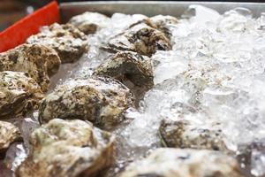 huîtres sur glace