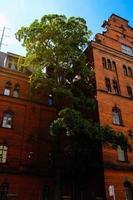 Immeuble de grande hauteur en béton brun pendant la journée photo