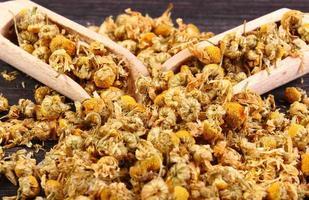 Camomille séchée sur table en bois, médecine alternative photo