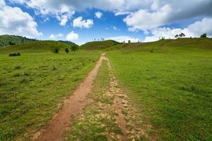 collines vertes dans la province de ranong