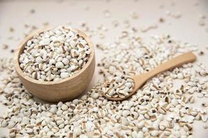 le millet est une céréale utile photo