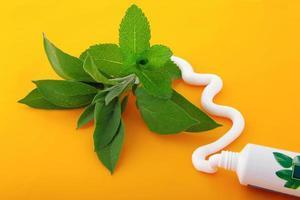 tube de dentifrice saveur menthe photo