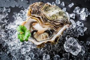 délicieuses huîtres sur glace pilée photo