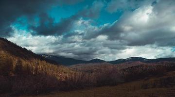 Champ d'herbe brune sous un ciel nuageux photo
