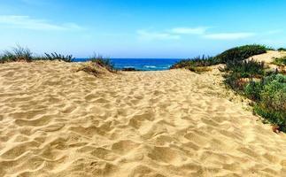 dunes de sable à la plage