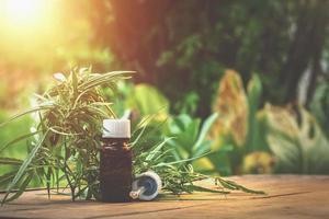 teinture médicinale à base de plantes