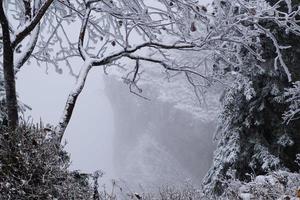 temps brumeux dans les montagnes photo