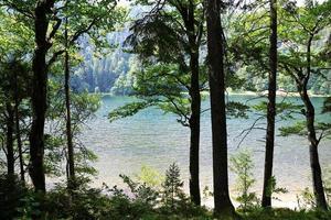 lac dans la forêt photo