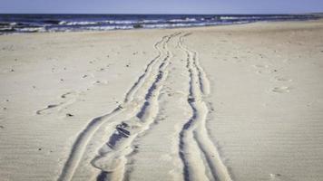 traces dans le sable photo