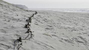 plage de dunes de sable photo
