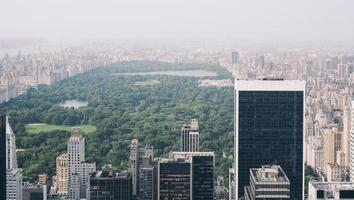 Central Park, New York photo