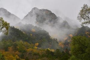 Montagne de la forêt d'automne à Kamikochi au Japon photo