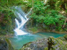 cascades dans la jungle photo