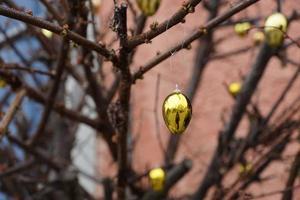 décoration de pâques sur un arbre