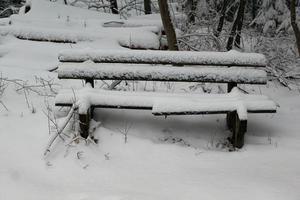 banc en hiver photo