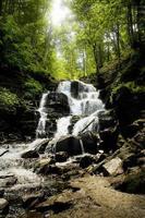 petite cascade dans la forêt photo