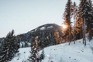 sommet de la montagne enneigée