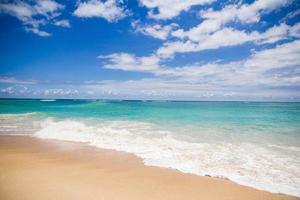 vagues de l'océan frappant le rivage photo