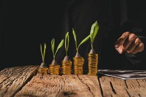 concept de croissance monétaire photo