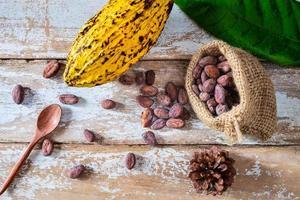 cabosse de cacao et fèves de cacao photo