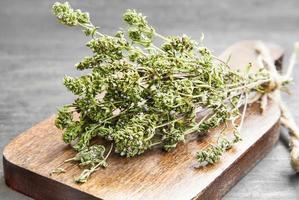 herbe culinaire de thym